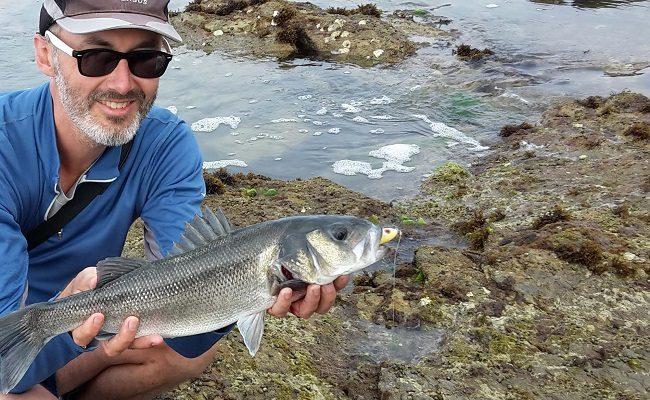 les joies de la pêche du bar depuis la côte